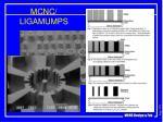 mcnc ligamumps