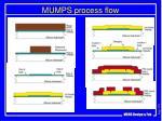 mumps process flow3