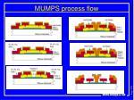 mumps process flow4