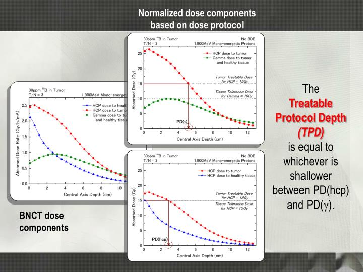 Normalized dose components based on dose protocol
