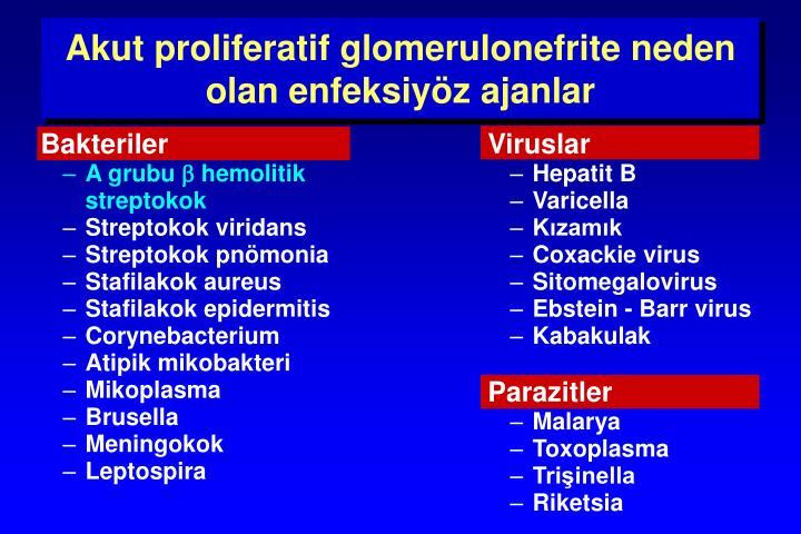 Akut proliferatif glomerulonefrit