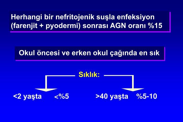 Herhangi bir nefritojenik suşla enfeksiyon (farenjit + pyodermi) sonrası AGN oranı %15