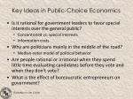key ideas in public choice economics