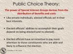 public choice theory1