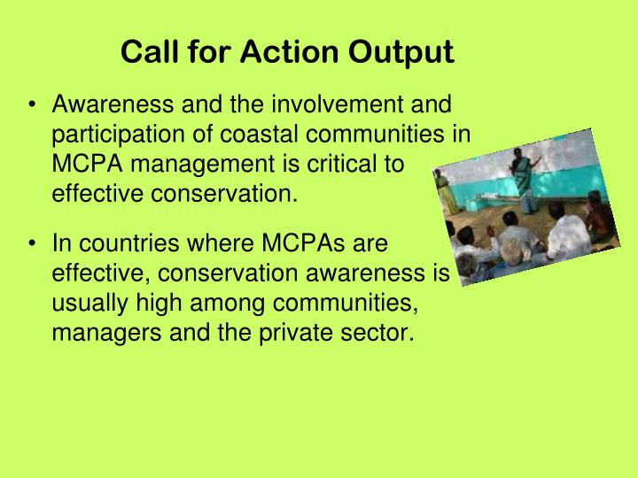 Call for Action Output