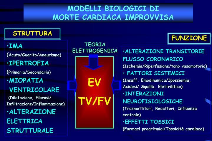 MODELLI BIOLOGICI DI