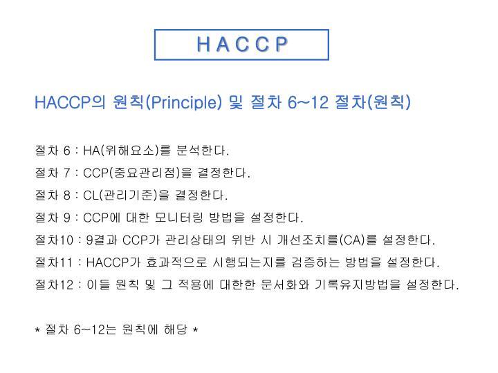 H A C C P