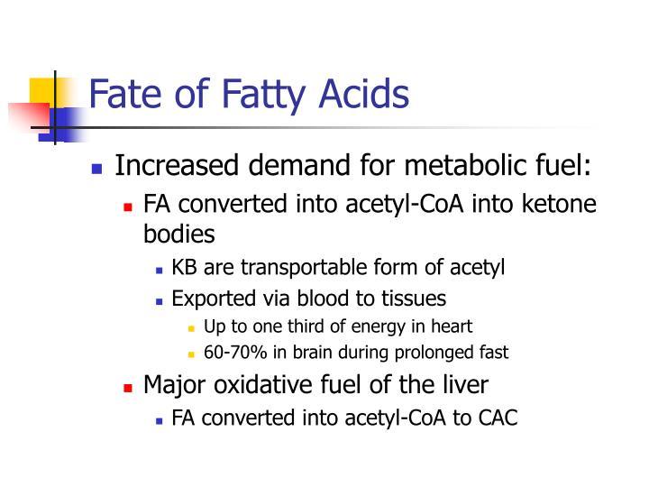 Fate of Fatty Acids