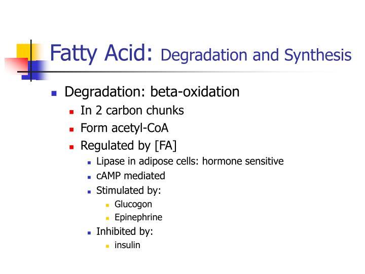 Fatty Acid: