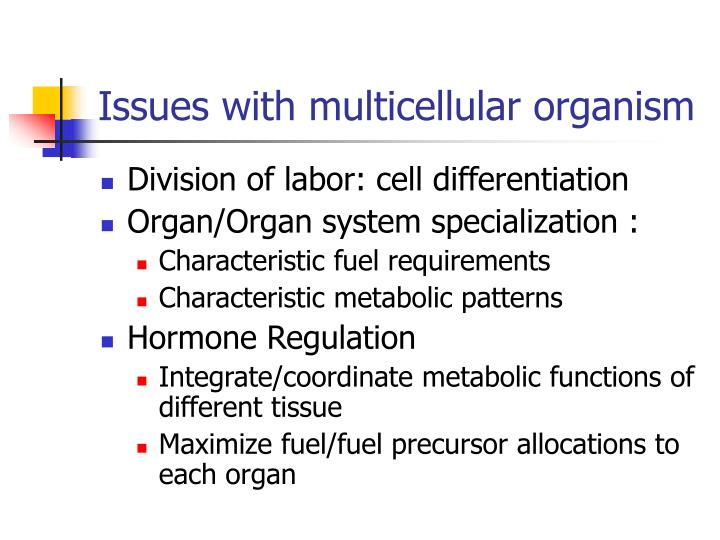 Issues with multicellular organism