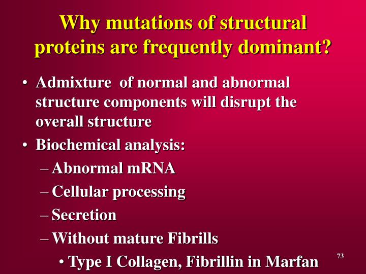 Why mutations of structural proteins are frequently dominant?