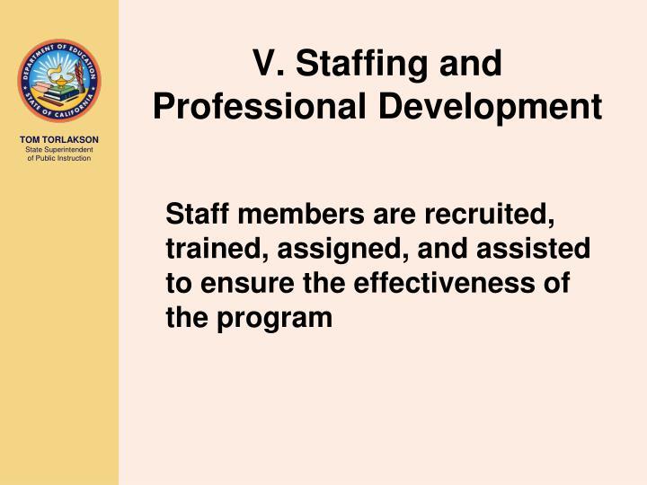 V. Staffing and Professional Development