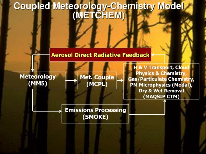 Coupled Meteorology-Chemistry Model (METCHEM)