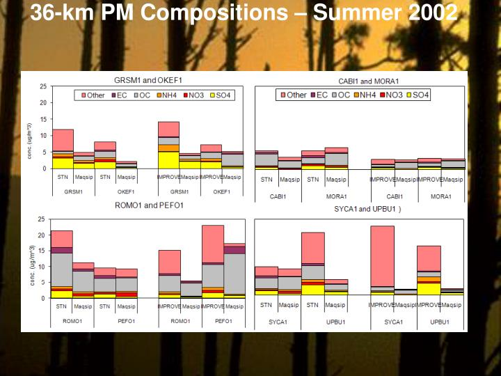 36-km PM Compositions – Summer 2002