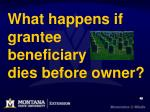 what happens if grantee beneficiary dies before owner