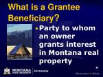 what is a grantee beneficiary