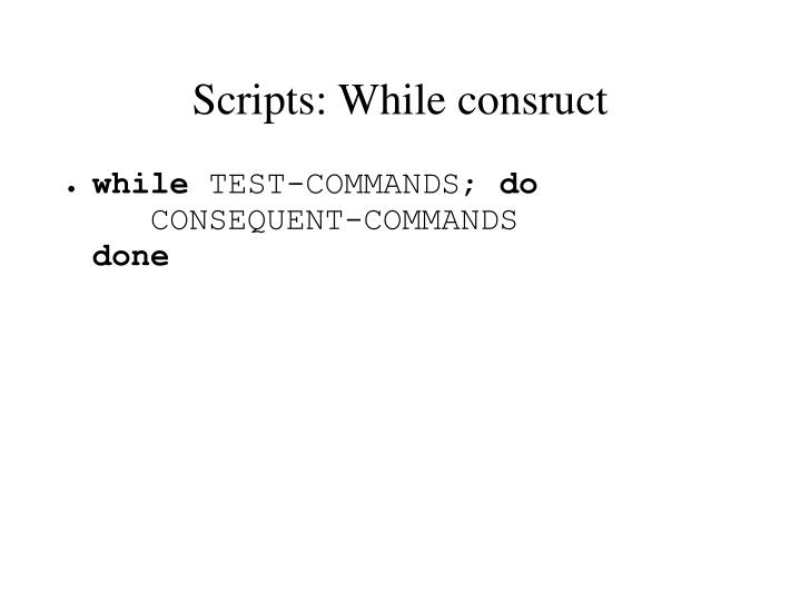 Scripts: While consruct