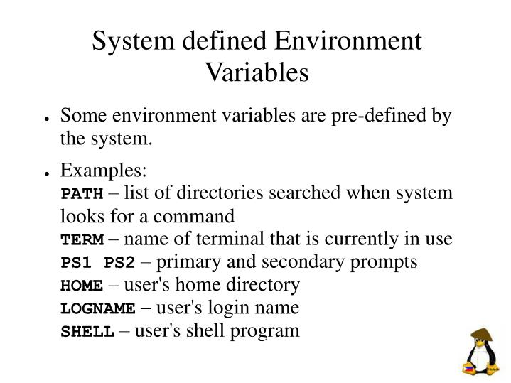 System defined Environment Variables
