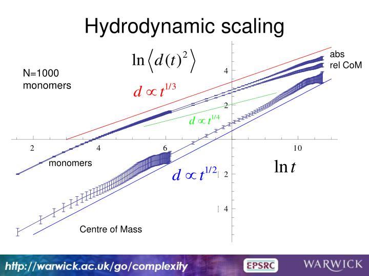 Hydrodynamic scaling