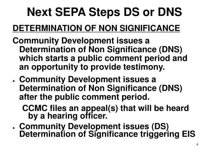 Next SEPA Steps DS or DNS