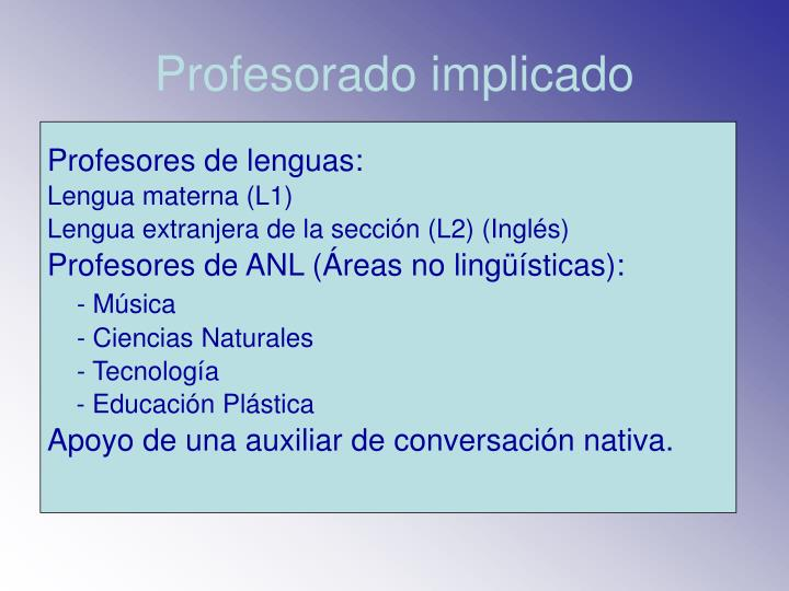 Profesorado implicado