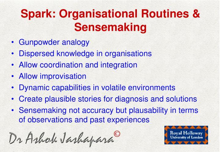 Spark: Organisational Routines & Sensemaking
