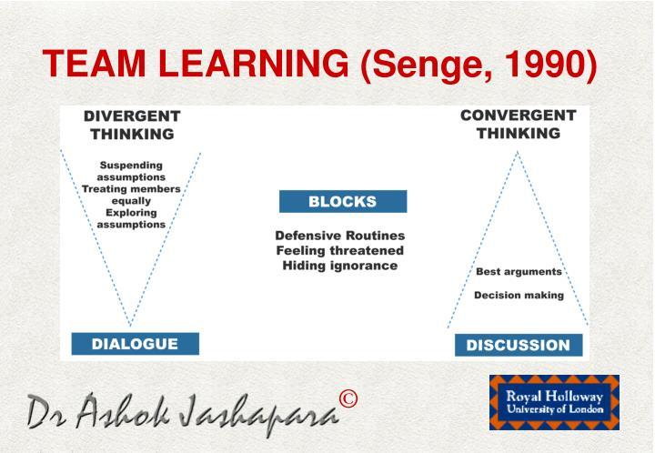 TEAM LEARNING (Senge, 1990)