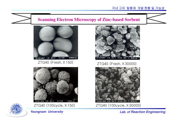 Scanning Electron Microscopy of Zinc-based Sorbent