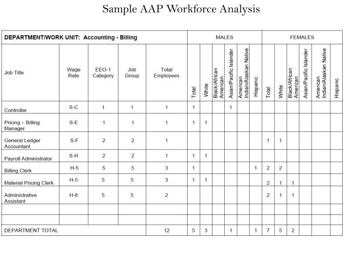 Sample AAP Workforce Analysis