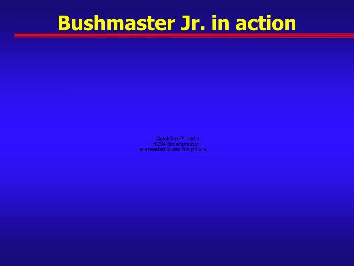 Bushmaster Jr. in action