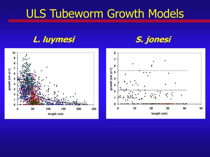 ULS Tubeworm Growth Models