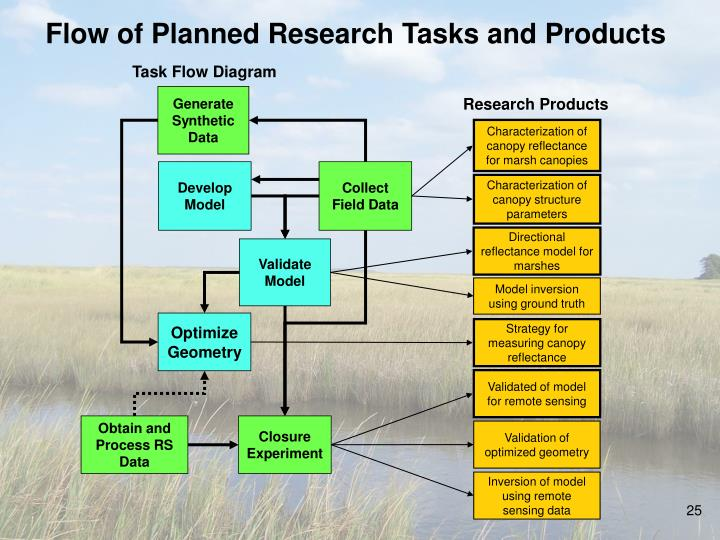 Flow of Planned Research Tasks and Products
