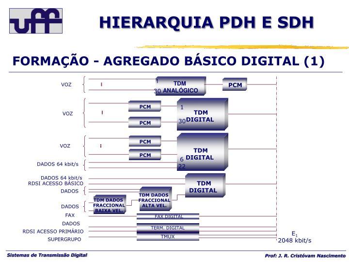 FORMAÇÃO - AGREGADO BÁSICO DIGITAL (1)