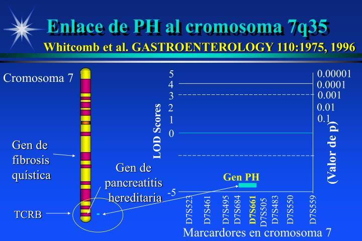 Enlace de PH al cromosoma