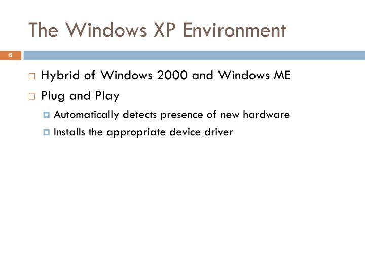 The Windows XP Environment