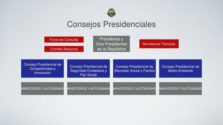 Consejos Presidenciales