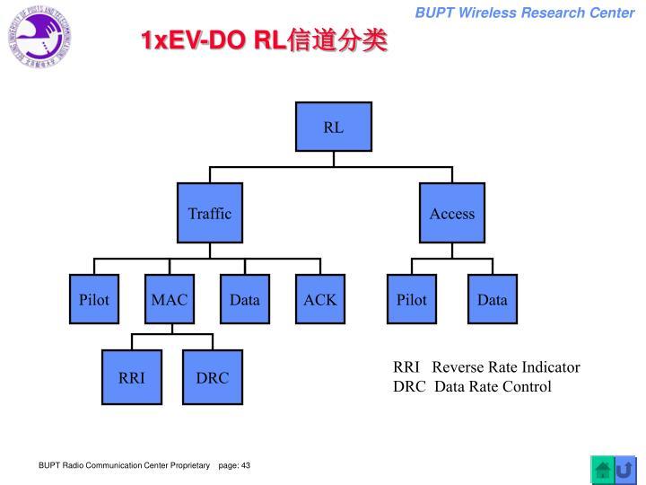 1xEV-DO RL