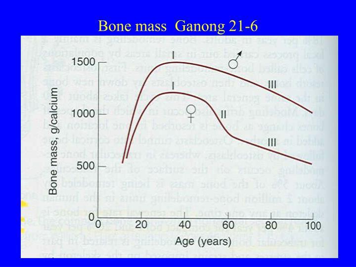 Bone mass  Ganong 21-6