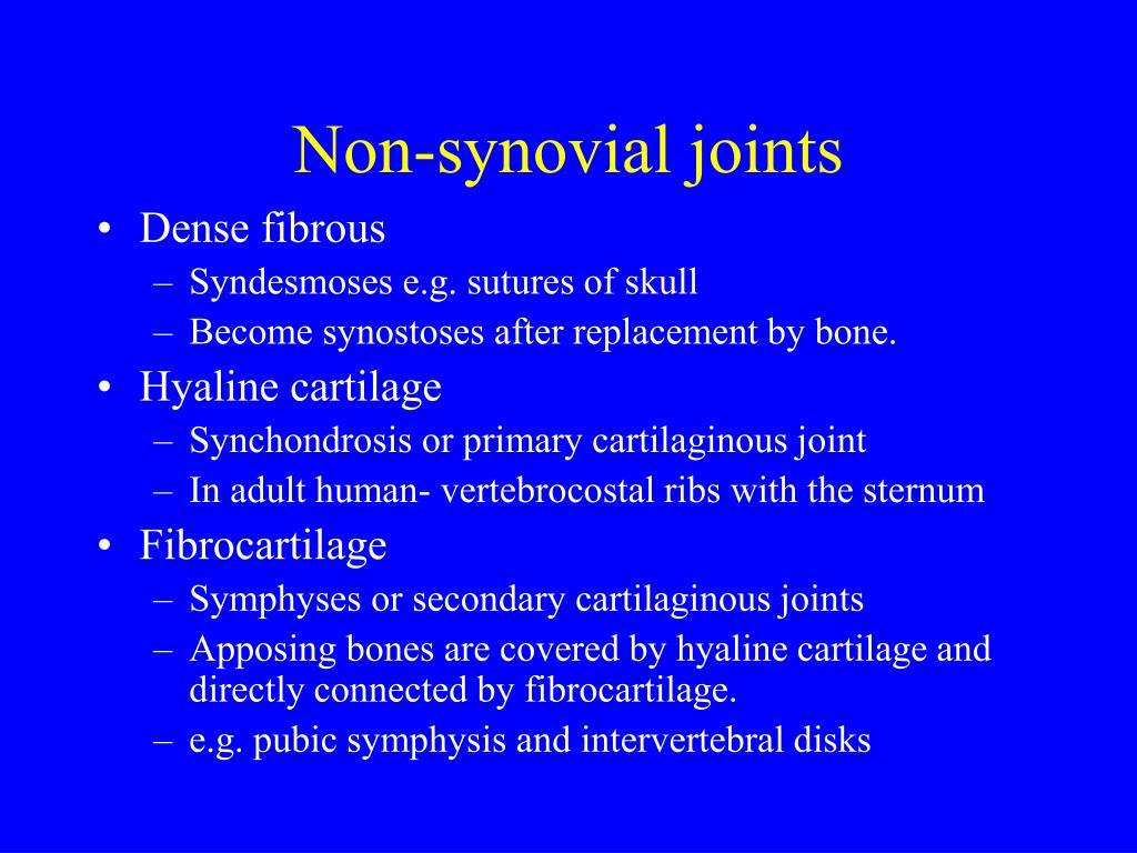 Synchondrosis Vs Synovial – O synchondrosis o cartilagenous o synovial o fibrous.