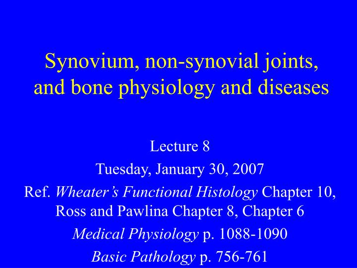 Synovium non synovial joints and bone physiology and diseases