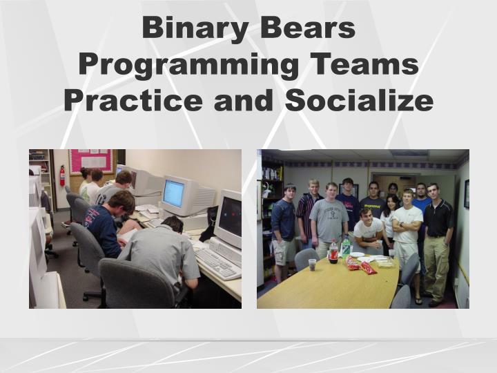 Binary Bears