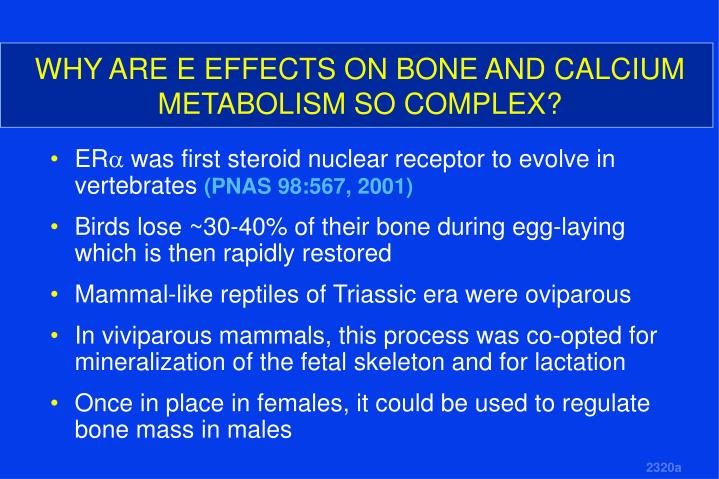 WHY ARE E EFFECTS ON BONE AND CALCIUM METABOLISM SO COMPLEX?