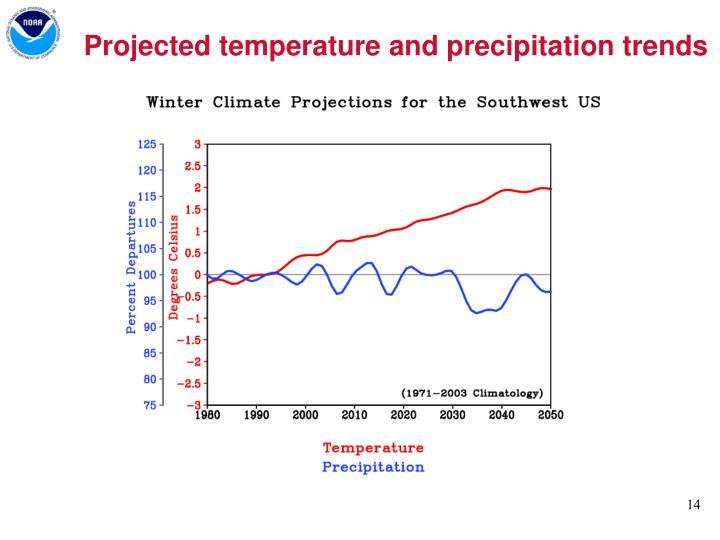 Projected temperature and precipitation trends