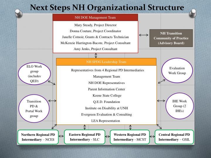 Next Steps NH Organizational Structure