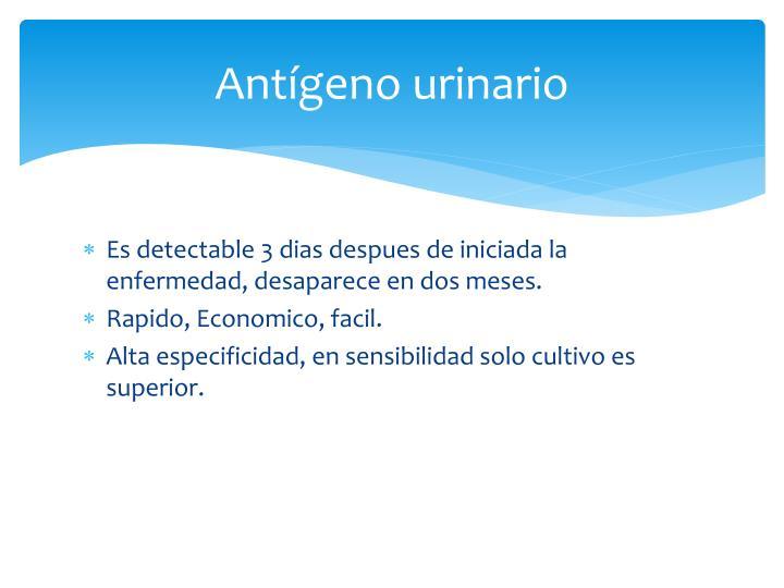 Antígeno urinario