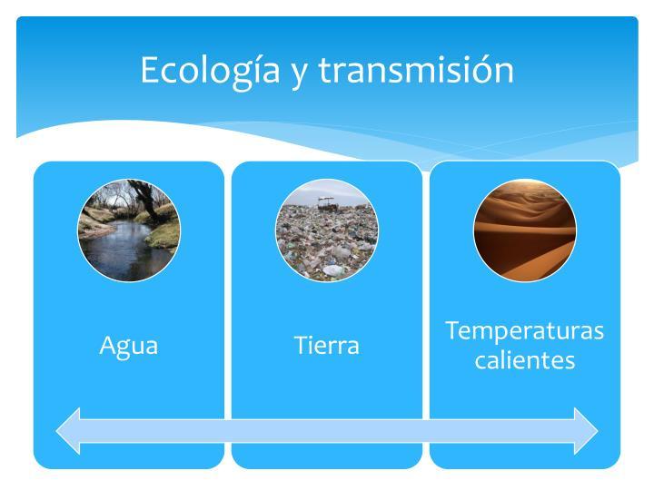 Ecología y transmisión