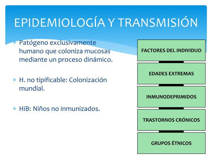 Epidemiolog a y transmisi n