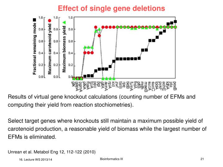 Effect of single gene deletions