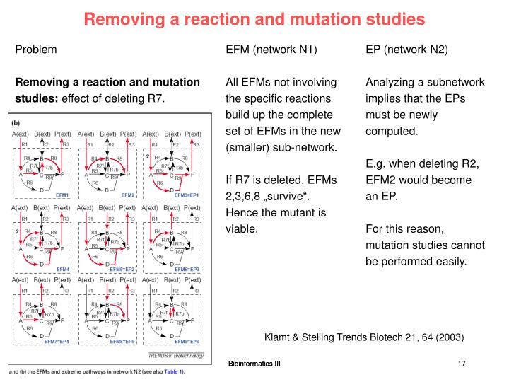 Removing a reaction and mutation studies