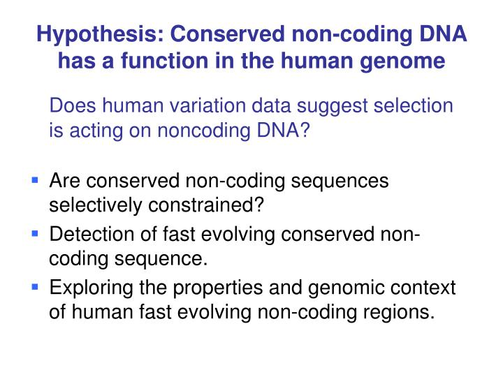 Hypothesis conserved non coding dna has a function in the human genome